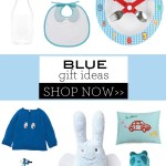 Blue Gift Ideas for Boys